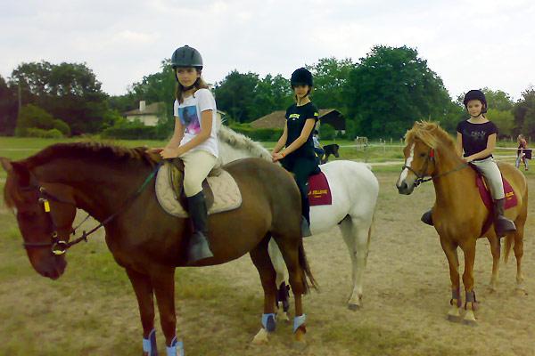 love love chevaux mon club d quitation